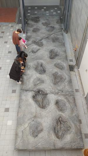 익룡·악어·조류 함께 살았던 1억1000만 년 전 진주로 여행