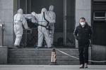 베이징 뚫렸다…중국 '우한 폐렴' 속수무책