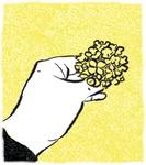 [도청도설] 온천천 유채꽃
