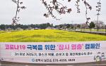 """삼척시, 상춘객 방문 이어지자 """"유채꽃밭 엎어버릴 것"""""""