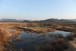 김해시, 진영읍에 270억 투입 도시재생 사업 추진
