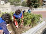 서구 서대신1동 바르게살기운동위원회, 식목일맞이 나무심기 봉사활동