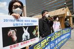 실험 후 안락사…국내 동물 한해 373만 마리 희생됐다