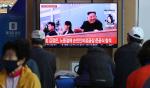 """민주당 """"가짜뉴스 유포·거짓 선동한 태영호·지성호 사과해야"""""""