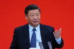 """시진핑 """"중국 경제 코로나 위기에 끄떡없다…잠재력 충분"""""""