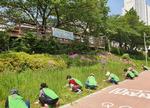 한국건강관리협회 부산건강검진센터 건협사랑 어머니봉사단, 환경정화 활동