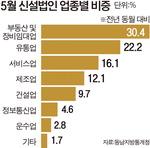 부동산 꼼수법인 덕?…부산 신설법인 역대급 증가