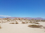 사라진 사막도시 '누란'을 찾아나선 유홍준의 여정