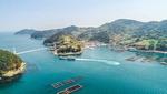 [바캉스 특집-경남 통영시] 케이블카로 한려수도 한눈에…저마다 절경 품은 섬 투어 유혹