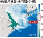 양쯔강 물 서·남해로 대거 유입…제주연안 '저염분수' 비상