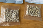 아마존, 외국 업자 미국에 씨앗 판매 금지…중국발 '정체불명 씨앗' 사건 관련