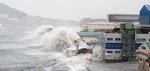 연이은 태풍에…해안가 기업들 피해 '억'소리