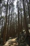 도심 산책 여행 <7> 천마산조각공원·구덕문화공원