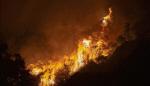 美 서부 해안 3개주서 40건의 대형산불 발생