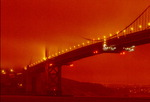 """""""핵겨울 같다""""…미국 서부 40여 개 산불로 황폐화"""