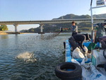 폭우로 쓸려간 섬진강 '재첩' 이식해 되살린다