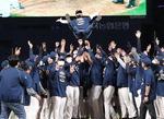 '데이터 야구'와 신예들 위업 합작