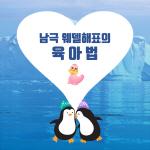 [극지와 바다이야기] 1편 : 남극 웨델해표의 육아법
