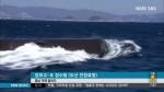 막강 전력 갖춘 장보고 잠수함 진수