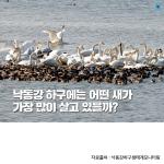[카드뉴스] 낙동강 하구에는 어떤 새가 가장 많이 살고 있을까?