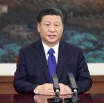 """시진핑 """"올해 목표는 위대한 중국…새 장정 시작"""""""
