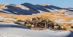 사우디 아시르 50년 만에 영하 2도…사하라 사막에도 눈 쌓여