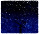 [이 한편의 시조] 별을 닦는 나무 /주광식
