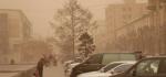 몽골서 모래폭풍으로 340여 명 실종…수색 중
