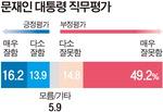 문 대통령 직무수행 '잘함' 30% '잘못함' 64.1%