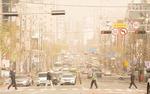 누렇게 변한 부산…11년 만에 황사경보, 미세먼지도 최악