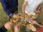 [최태호의 와인 한 잔] 와인어게인
