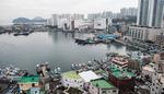 국가어항 노후화…해양레저 거점 육성 걸림돌로