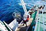 서·남해 갯벌 연안 생태환경 샅샅이 조사한다