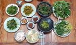 최원준의 음식 사람 <32> 산청 봄나물밥상·흑돼지구이