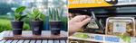 화분 나눠주고 채식 도시락 선봬…호텔·유통가 '그린 마케팅' 다채