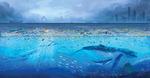 쓰레기에 신음하는 바다 동물…그 고통은 사람이 돌려받는대요