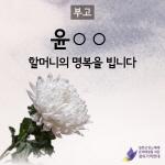 일본군 위안부 피해자 할머니 별세…240명 중 생존자 14명
