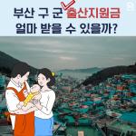[카드뉴스] 부산 구 군 출산지원금은 얼마일까?