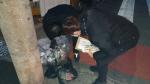 쓰레기 1년 무단투기… 구청직원 끈질긴 추적 끝에 단속