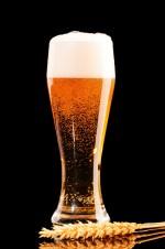 수제맥주 탐방-전국 편<1>초여름 혼술하기 좋은 달달한 맥주