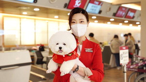 [바캉스 특집-티웨이항공] 귀여운 댕댕이·냥이와 비행기 타고 특별한 '펫캉스'