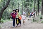 [바캉스 특집-울산 북구] 8500여 그루 편백 호위하는 '언택트' 천마산 산림욕장