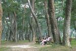 [바캉스 특집-경남 하동군] 빌딩숲 떠나 숲속으로…휴양림서 모험·피서 한번에