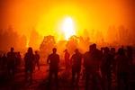 그리스 산불, 서울 면적 절반 태웠다