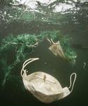폐플라스틱 습격…바다의 비명 <하> 죽음의 바다