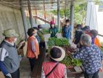 남부민1동 새마을지도자협의회,'치유텃밭 프로그램' 운영