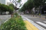 BRT 정류장에 식물이...미세먼지 잡고 경관 개선까지