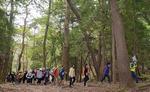 가을 숲길 걷기 좋아요