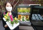 식물 손쉽게 키우는 '스마트 정원'