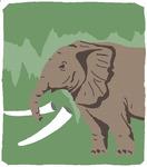 [도청도설] 상아 없는 코끼리